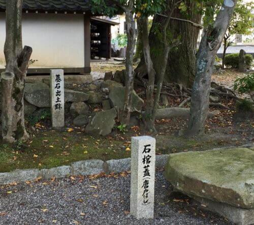 墓石出土跡と石棺蓋